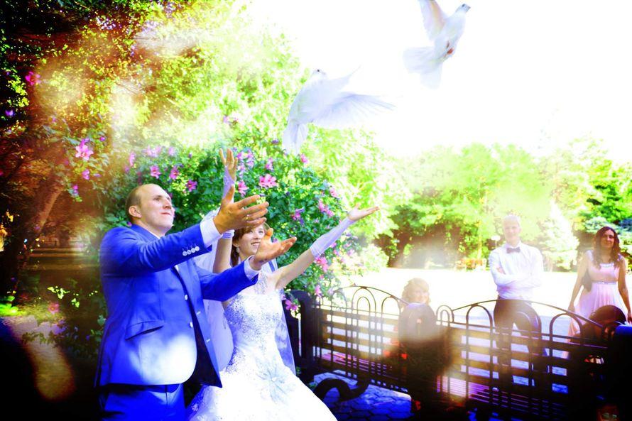 Фото 13458448 в коллекции Свадебные фотки - Видео и фотосъёмка - Александр Пугачев