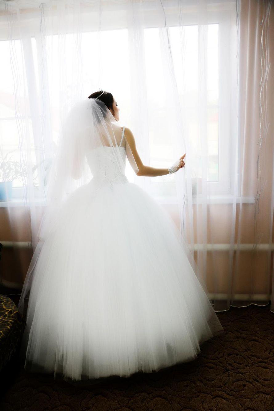 Фото 13458478 в коллекции Свадебные фотки - Видео и фотосъёмка - Александр Пугачев