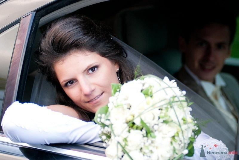 счастливая жена - фото 60678 GoldenKitten