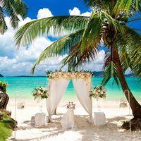 Свадьбы и фотосесии