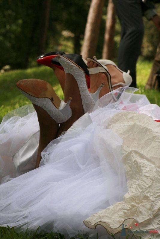 """Фото 35564 в коллекции фотосессия """"невест"""" - Фотограф Мария Стеклова"""