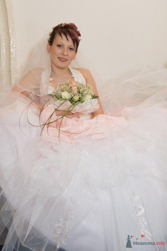 Фото 58698 в коллекции моя свадьба