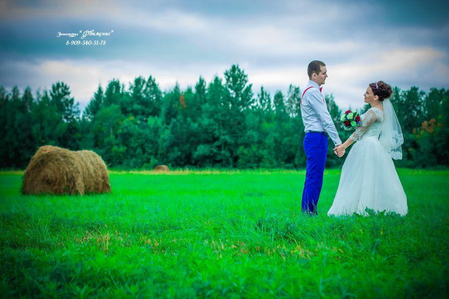 Фото 16360698 в коллекции Мои работы - Фотограф и видеограф Телесов Сергей