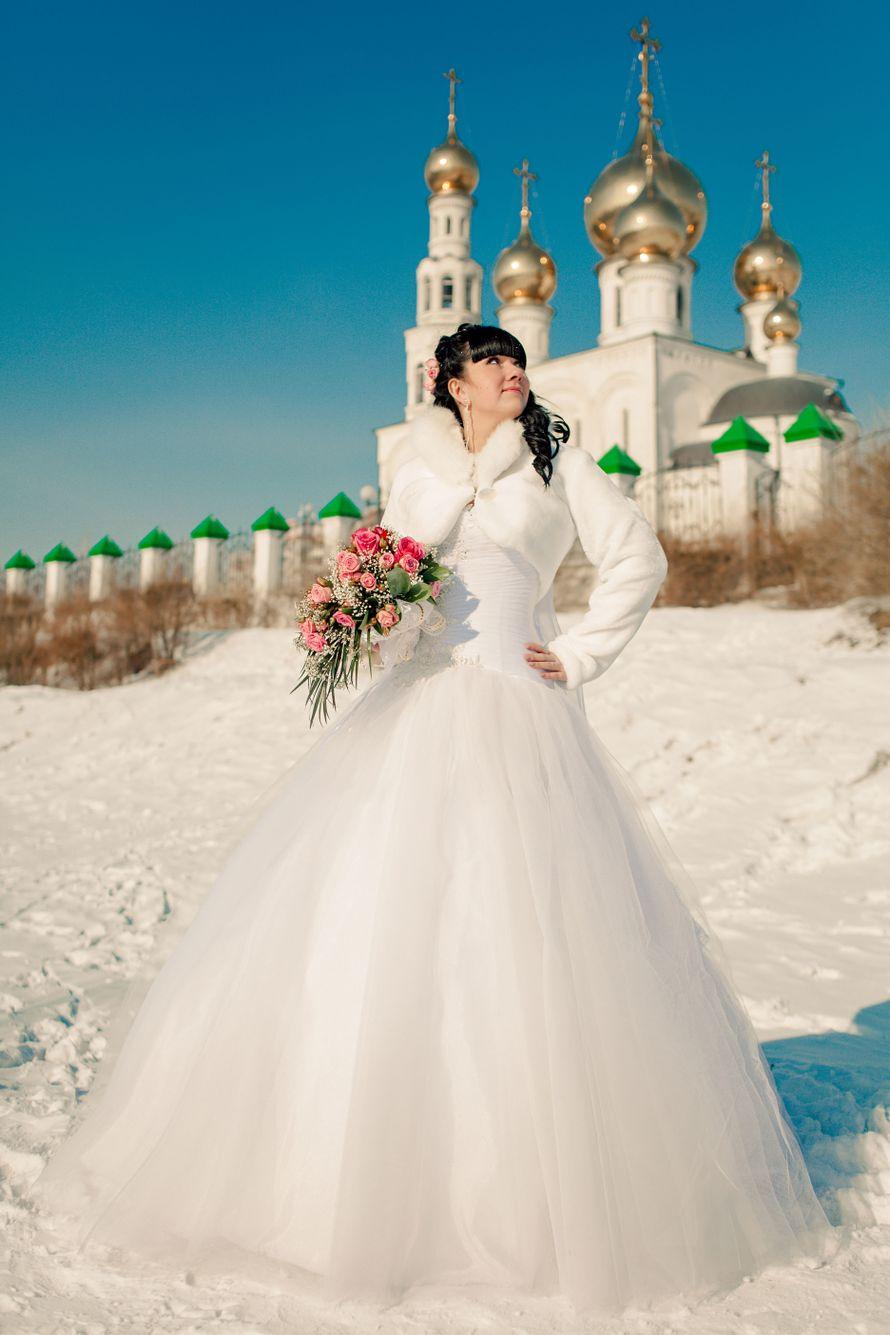 Фото 719325 в коллекции Портфолио - Фотограф Виталий Третьяков