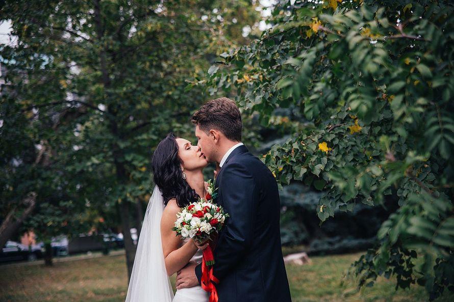 Фото 14232870 в коллекции Свадебное фото | 2016 - Фотограф Павел Покидов