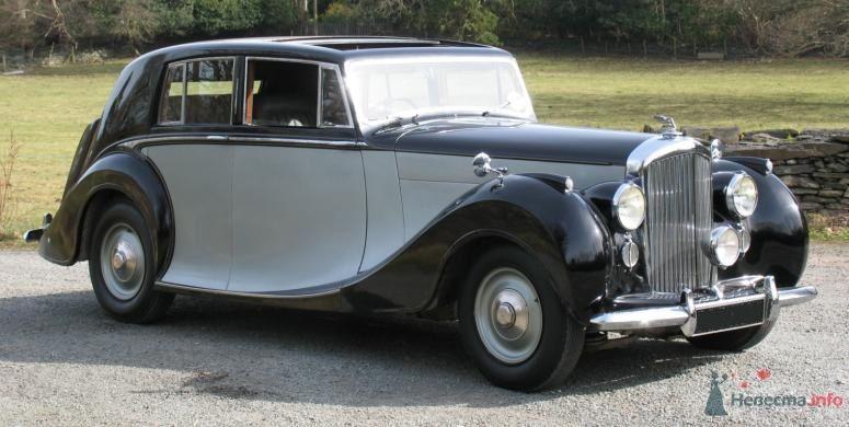 Аренда ретро автомобиля на свадьбу, Black and White Cars - аренда лимузинов - фото 46811 Black and White Cars - аренда лимузинов