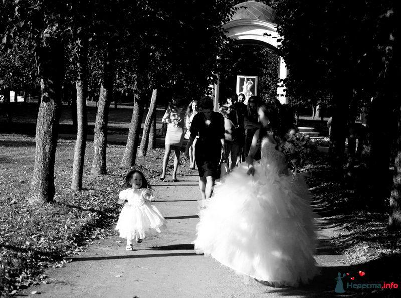 Фото 104350 в коллекции Влад и Альбина 5  сентября - Фотограф Марат Лялин