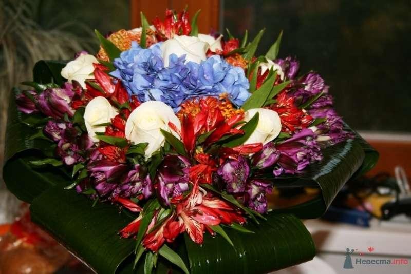 Фото 44166 в коллекции Своими руками - Вашкетова Юлия - организатор свадеб, флорист.