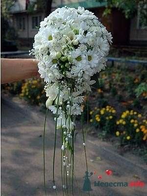Фото 50600 в коллекции Цвяточки!  - Вашкетова Юлия - организатор свадеб, флорист.