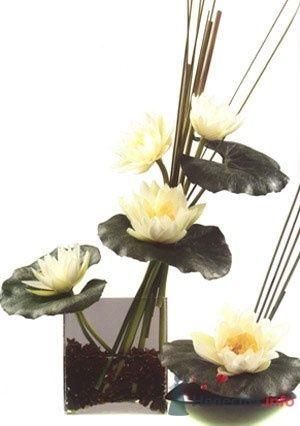 Фото 51874 в коллекции Цвяточки!  - Вашкетова Юлия - организатор свадеб, флорист.