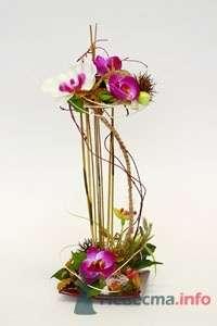 Фото 51875 в коллекции Цвяточки!  - Вашкетова Юлия - организатор свадеб, флорист.