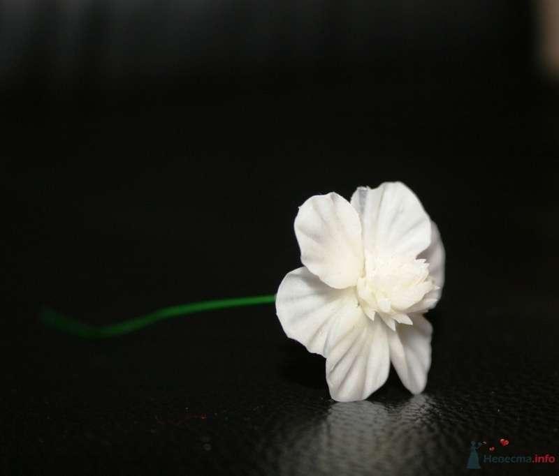 Фото 76311 в коллекции Фарфоровые цвяточки (handmade) - Вашкетова Юлия - организатор свадеб, флорист.