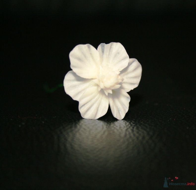 Фото 76312 в коллекции Фарфоровые цвяточки (handmade) - Вашкетова Юлия - организатор свадеб, флорист.