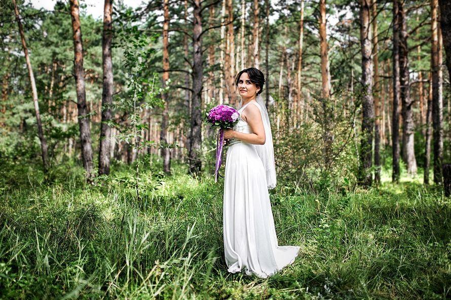 Фото 15228628 в коллекции Портфолио - Фотограф Сергеев Владимир