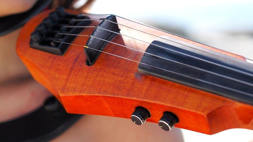скрипка електрическая каричневая - фото 15306600 Фотограф Альберт Крайчински