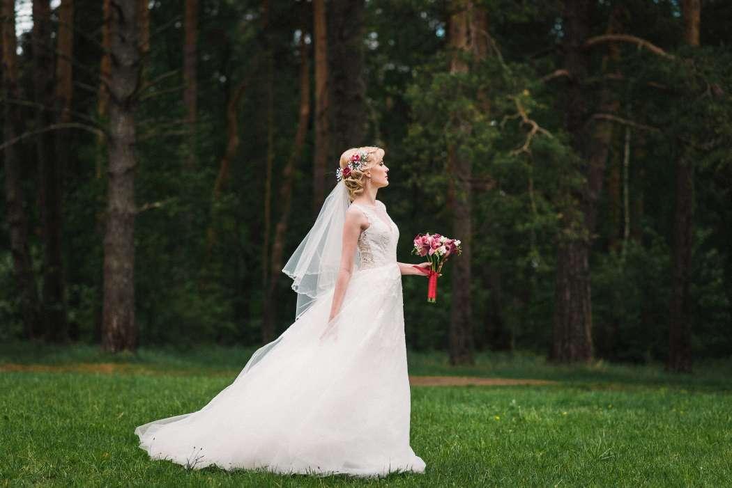 Фото 15445622 в коллекции Свадебное портфолио - Фотограф Абрамова Ксения