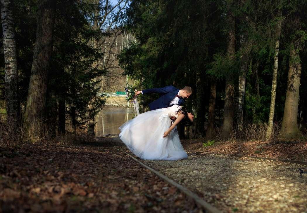 Фото 15478668 в коллекции Wedding - Фотограф Светлана Матонкина