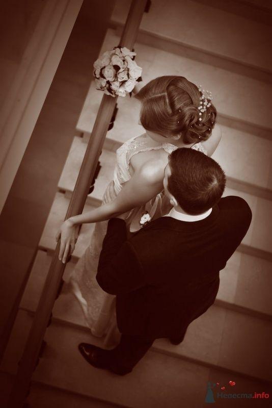 Фото 49697 в коллекции Мои фотографии - Свадебный стилист Надежда Сергиенко