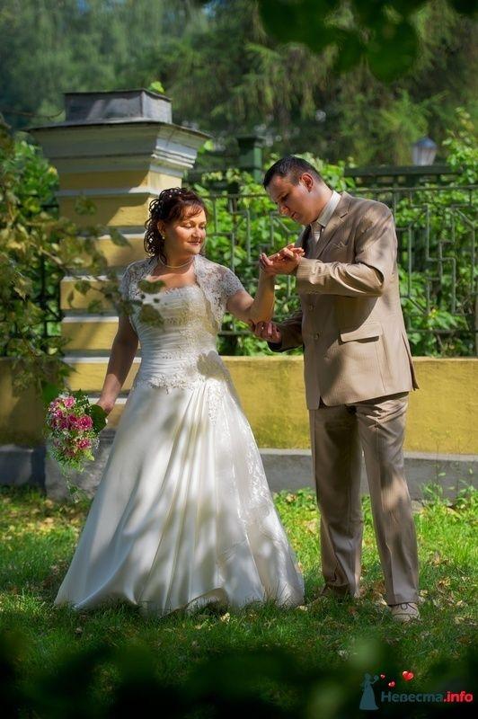 Фото 123962 в коллекции Свадебные фотографии - Геннадий Котельников - видео и фотоуслуги