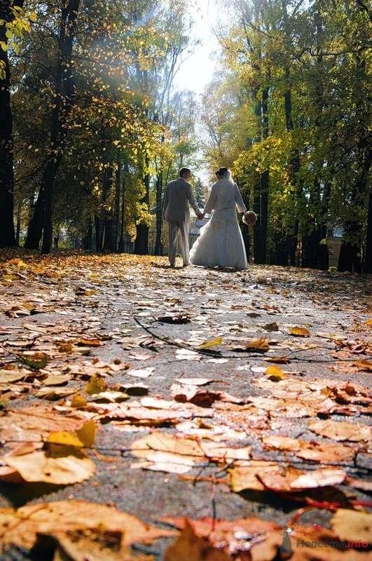 Фото 48226 в коллекции Мои фотографии - Евгения2009