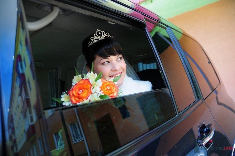 Фото 48240 в коллекции Мои фотографии - Евгения2009