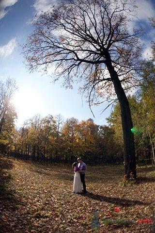 Фото 47488 в коллекции Мои фотографии - Harmonia