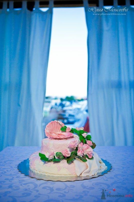 свадебный торт - фото 57400 Свадебный фотограф Моисеева Юлия