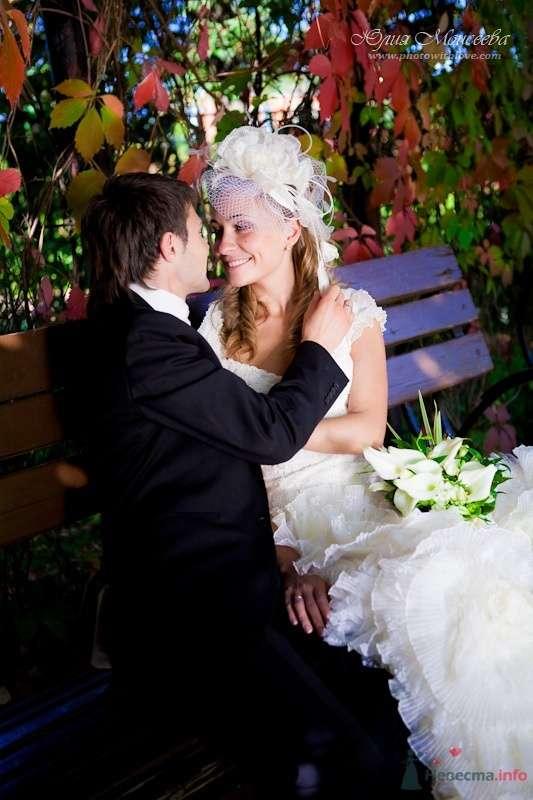 Красивое свадебное фото - фото 62540 Свадебный фотограф Моисеева Юлия