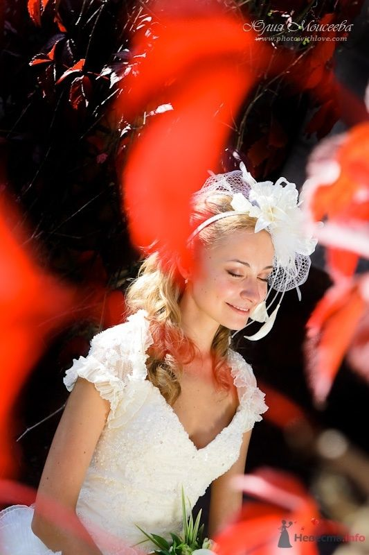 Моисеева Юлия - фото 62545 Свадебный фотограф Моисеева Юлия