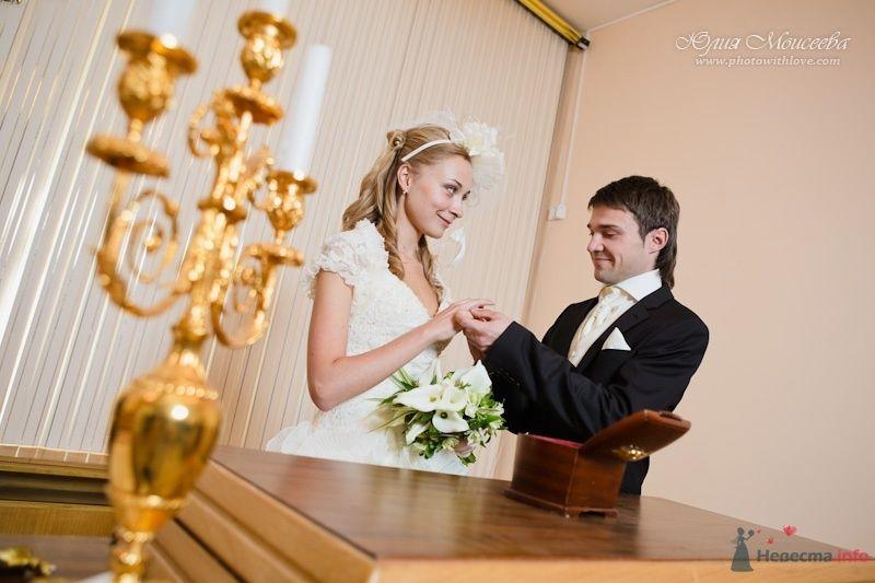 Пушкинский Загс - фото 62555 Свадебный фотограф Моисеева Юлия