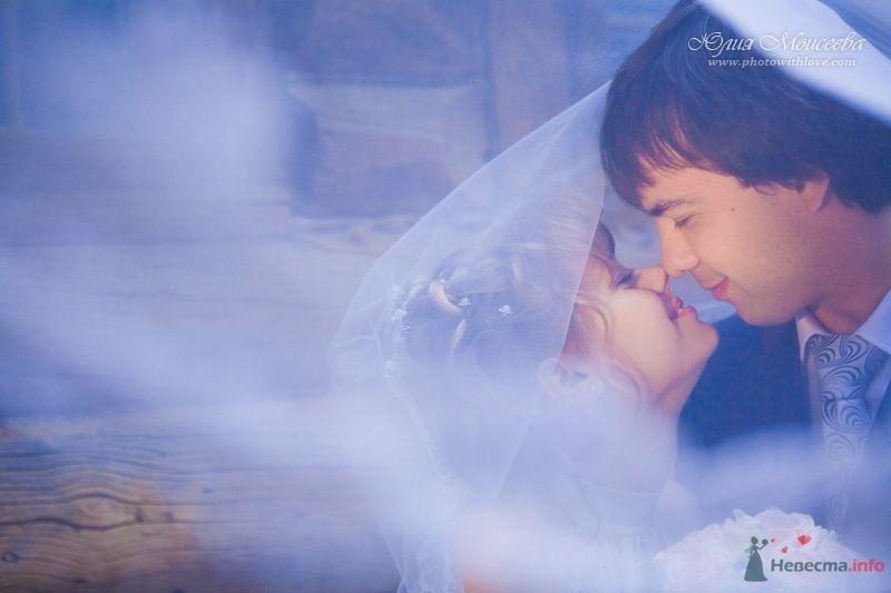фотограф Моисеева Юлия - фото 62584 Свадебный фотограф Моисеева Юлия