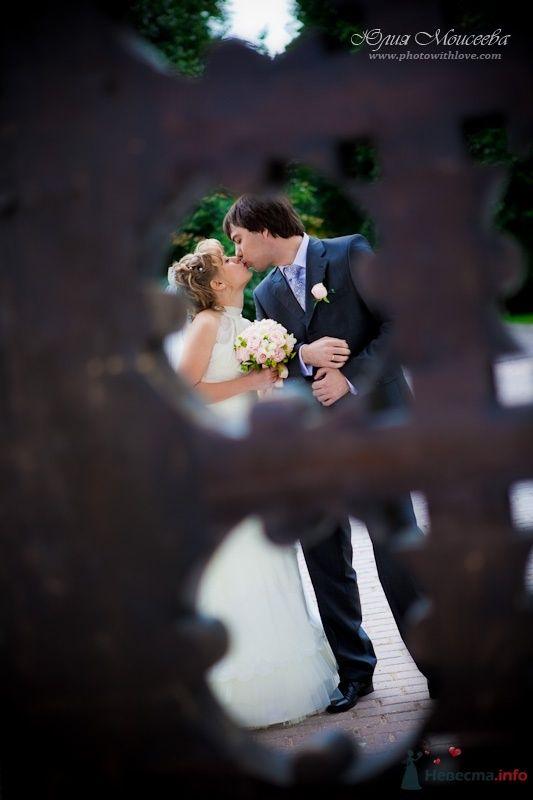 свадебные фотоистории - фото 62594 Свадебный фотограф Моисеева Юлия