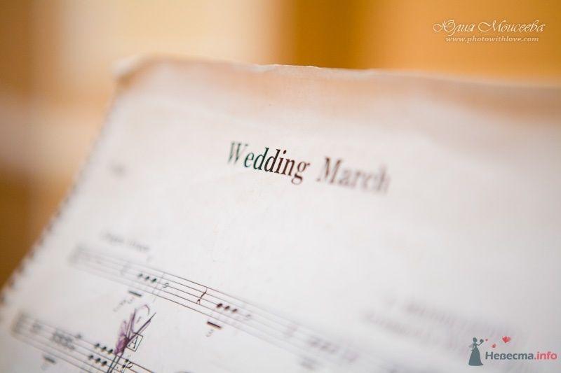 Wedding Marsh - фото 62602 Свадебный фотограф Моисеева Юлия