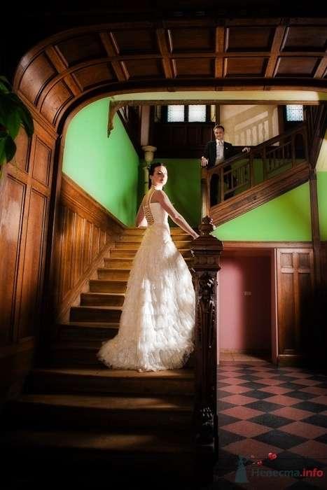 Фото 66614 в коллекции Мои фотографии - Свадебный фотограф Моисеева Юлия