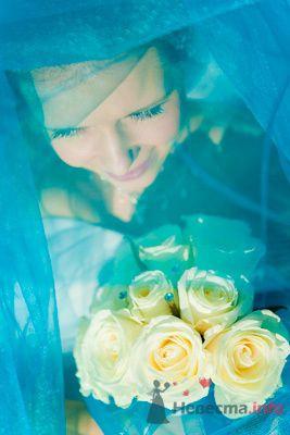 Фото 73448 в коллекции Мои фотографии - Свадебный фотограф Моисеева Юлия