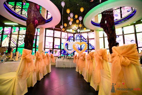 Фото 74577 в коллекции Мои фотографии - Свадебный фотограф Моисеева Юлия