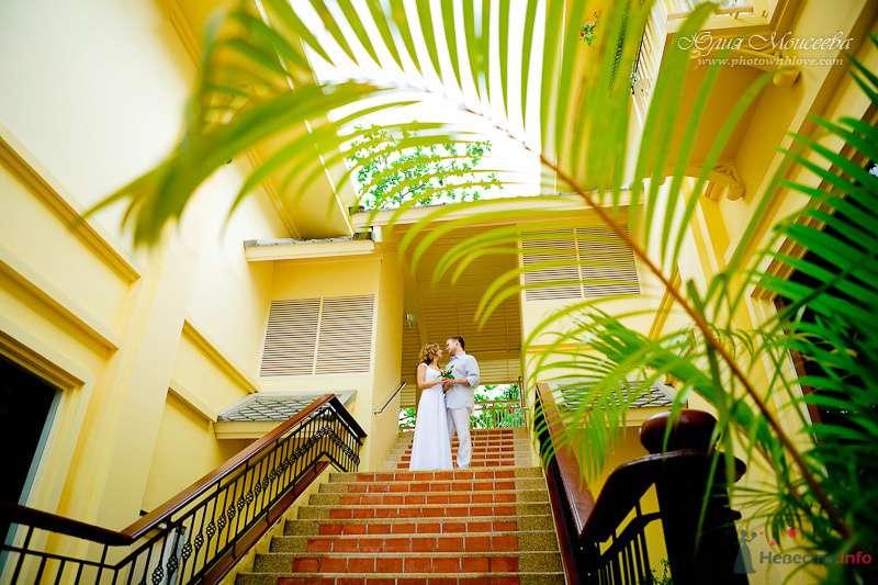 Фото 80400 в коллекции Мои фотографии - Свадебный фотограф Моисеева Юлия