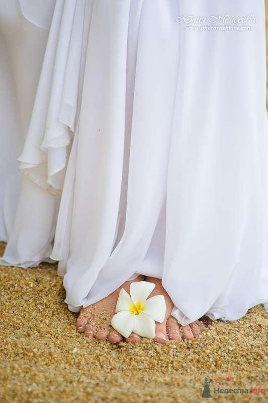 Фото 80405 в коллекции Мои фотографии - Свадебный фотограф Моисеева Юлия