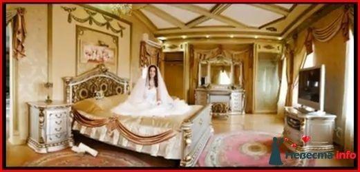 Фото 105038 в коллекции Мои фотографии - Свадебный фотограф Моисеева Юлия
