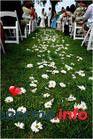 Фото 113670 в коллекции Мои фотографии - Свадебный фотограф Моисеева Юлия