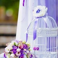 Моисеева Юлия красивые свадебные фотографии