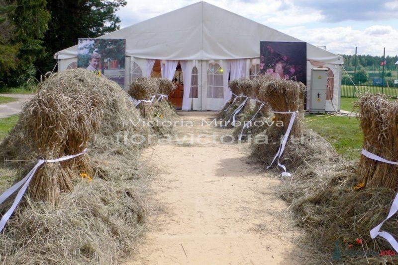 Свадьба.Оформление подиума и шатра - фото 29416 Cвадебная флористика и декор событий FloraVictoria