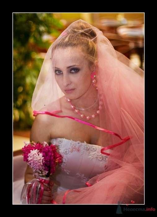 Фото 25019 в коллекции Мои фотографии - Фотограф Вилена Экон