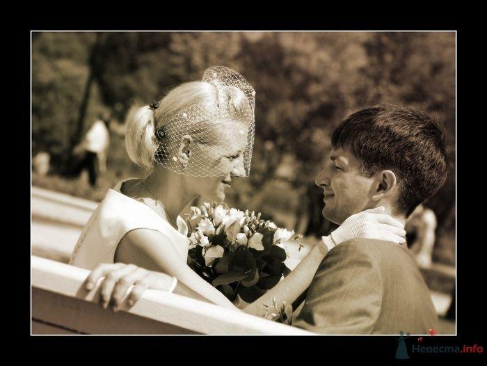 Жених и невеста, прислонившись друг к другу, сидят на фоне зелени - фото 27485 Фотограф Вилена Экон