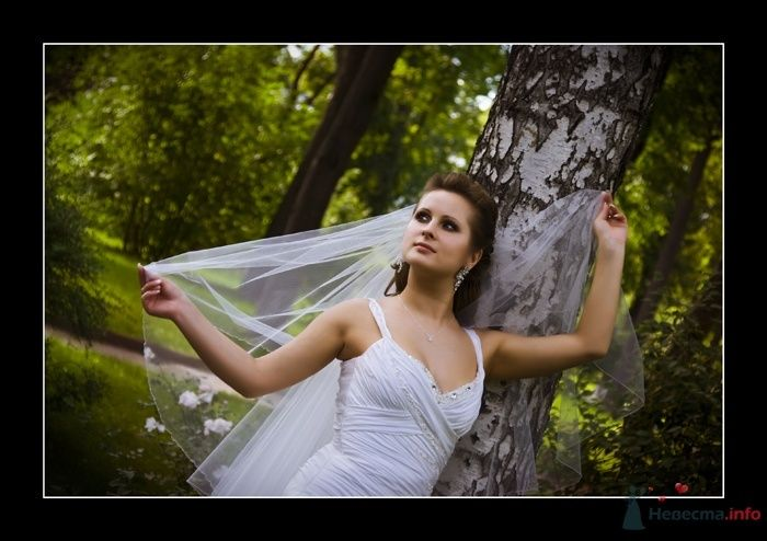 Фото 35980 в коллекции Свадьба Ирины и Алишера