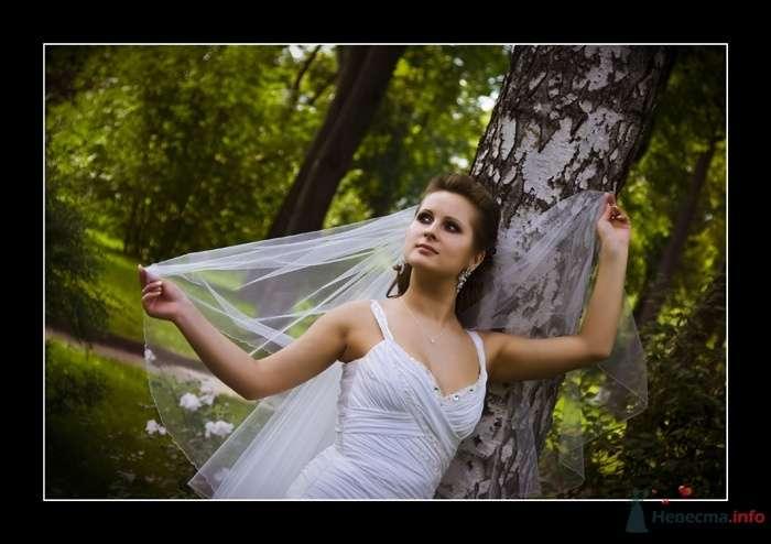 Фото 35980 в коллекции Свадьба Ирины и Алишера - Фотограф Вилена Экон