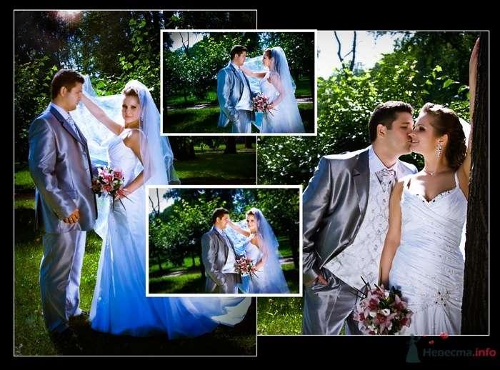 Фото 38107 в коллекции Свадьба Ирины и Алишера - Фотограф Вилена Экон