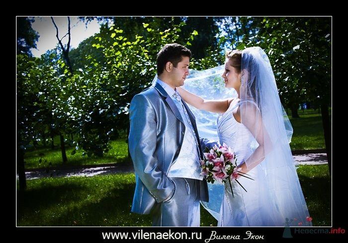 Фото 38111 в коллекции Свадьба Ирины и Алишера - Фотограф Вилена Экон