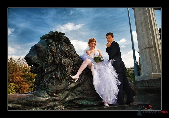 Фото 52288 в коллекции Татьяна и Андрей - Фотограф Вилена Экон