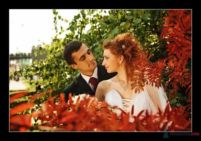 Фото 52290 в коллекции Татьяна и Андрей - Фотограф Вилена Экон